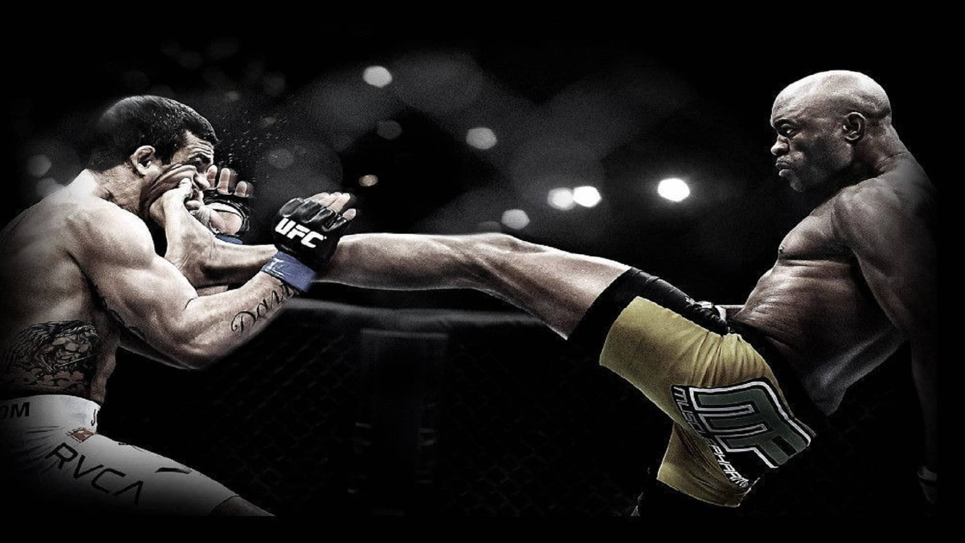 Combat-Sports-for-Beginners-What-are-the-different-types