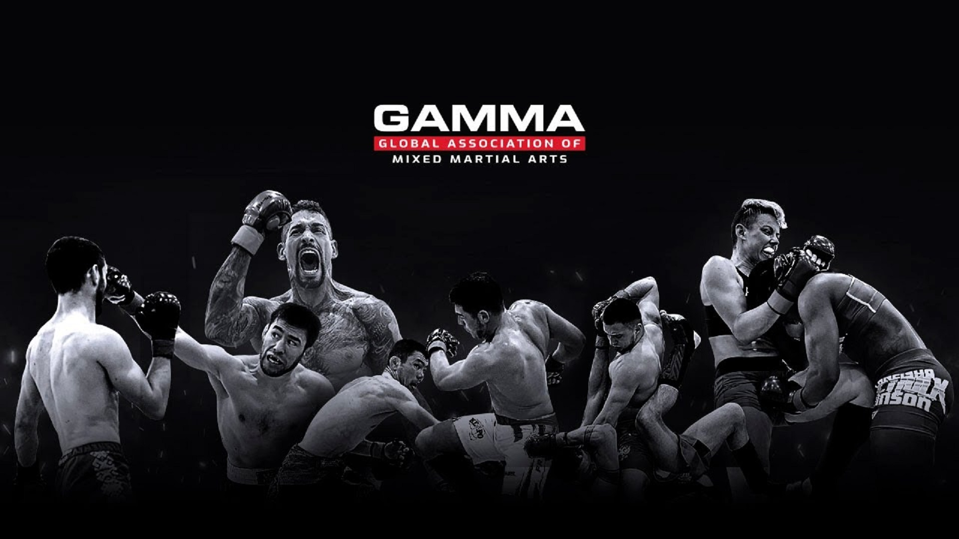 https://lockerroom.in/blog/view/GAMMA-USFMMA-Association