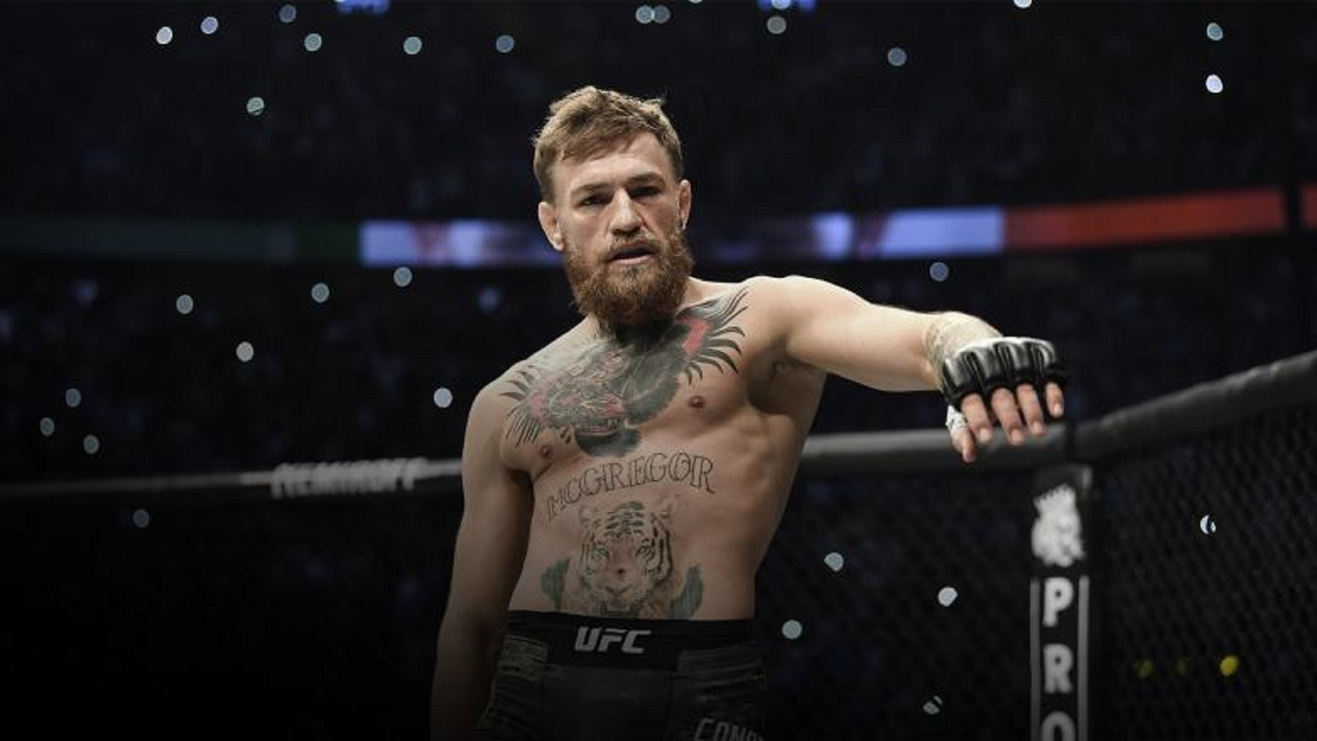 What-should-be-next-for-Conor-McGregor-in-the-UFC